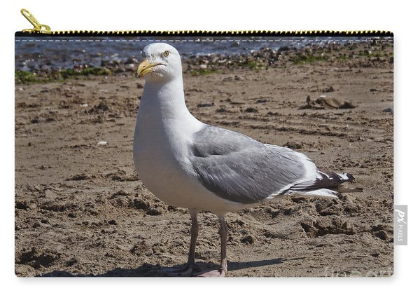Seagull On Beach Carry-all Pouch