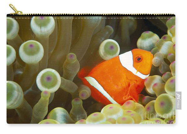 Spinecheek Clownfish Carry-all Pouch