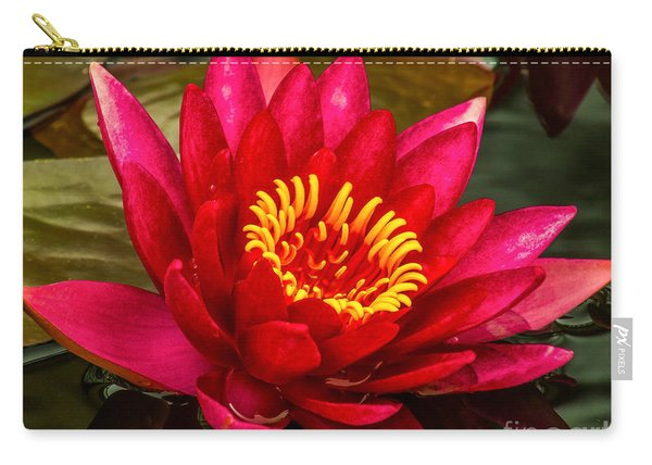 Water Lily 15-6 Carry-all Pouch
