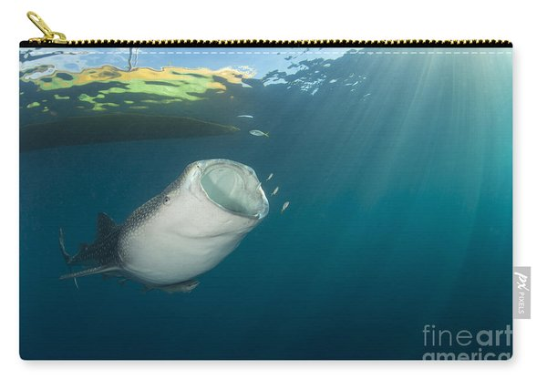 Whale Shark Coming Up From The Depths Carry-all Pouch