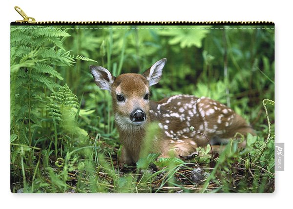 White-tailed Deer Odocoileus Carry-all Pouch