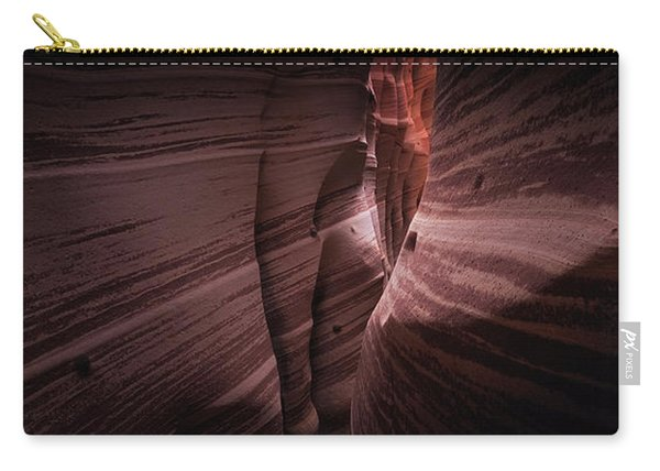 Zebra Canyon Carry-all Pouch