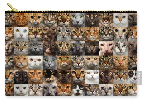 Carry-all Pouch featuring the photograph 100 Cat Faces by Sergey Taran