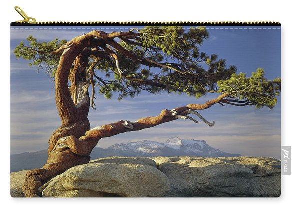 1m6701 Historic Jeffrey Pine Sentinel Dome Yosemite Carry-all Pouch