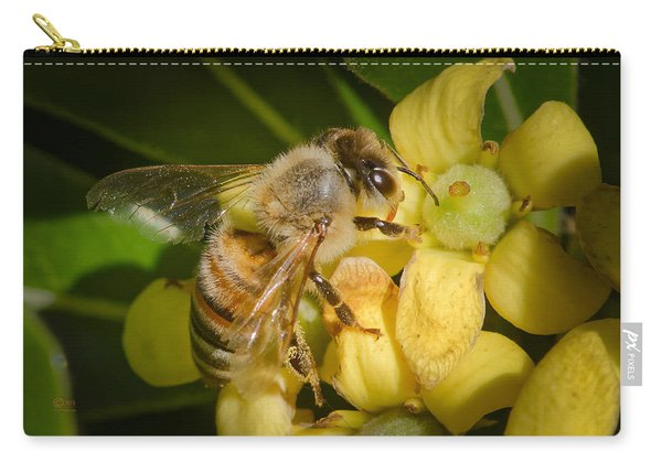 Bees Gathering From Pittosporum Flowers Carry-all Pouch