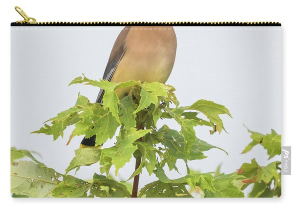 Cedar Waxwing Carry-all Pouch