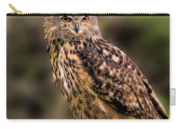 Eurasian Eagle Owl Perched On A Post Carry-all Pouch