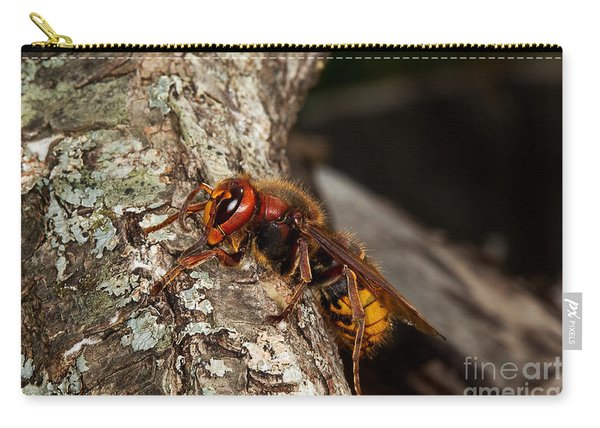 Hornet Vespa Crabo Carry-all Pouch