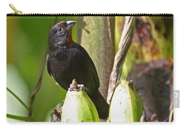 Lesser Antillean Bullfinch Carry-all Pouch