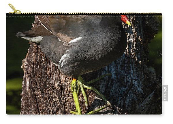 Moorhen Carry-all Pouch