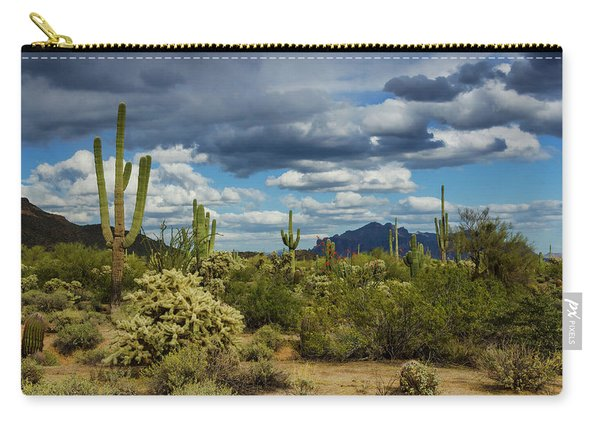 The Beauty Of The Desert  Carry-all Pouch