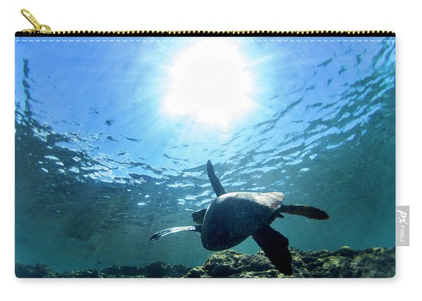 Turtles View Carry-all Pouch