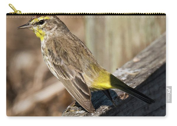 Warbler Carry-all Pouch