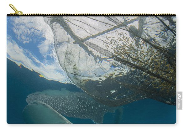 Whale Shark Swimming Carry-all Pouch