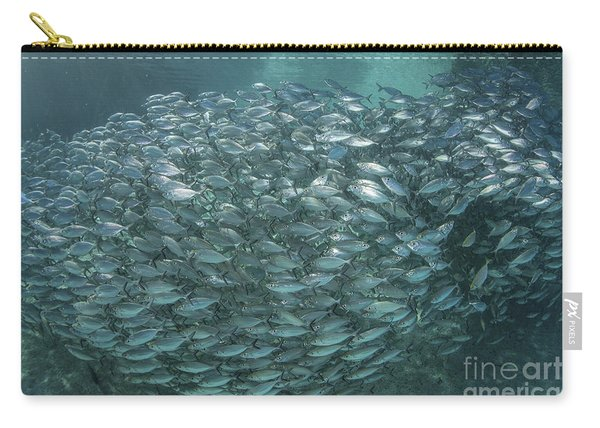 A Large School Of Scad In The Solomon Carry-all Pouch