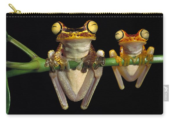 Chachi Tree Frog Hyla Picturata Pair Carry-all Pouch