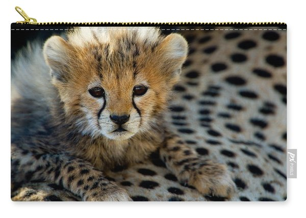 Close-up Of Cheetah Acinonyx Jubatus Carry-all Pouch