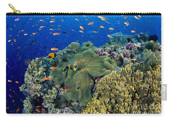 Fiji, Reef Scene Carry-all Pouch