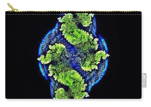 Tautological Fractals Carry-all Pouch