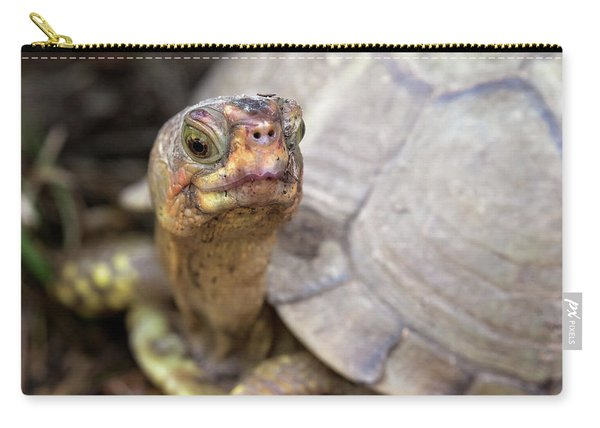 Turtle Town Carry-all Pouch
