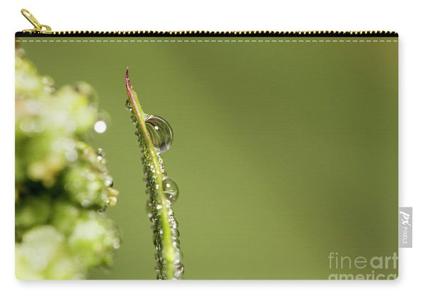 Water Drops On The Grass Carry-all Pouch