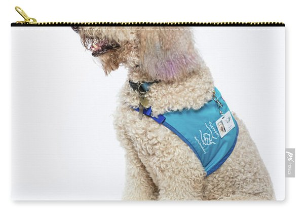 3010.057 Therapet Carry-all Pouch