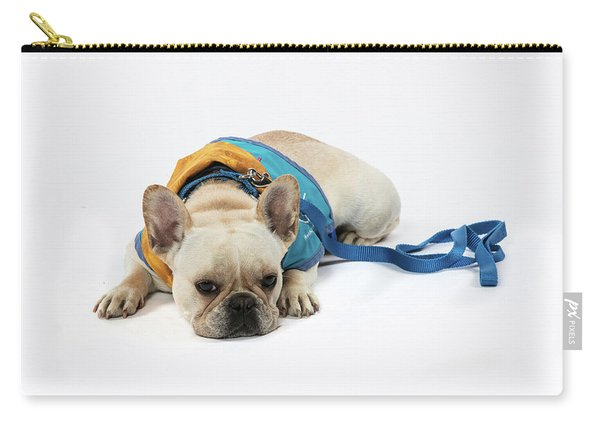 3010.066 Therapet Carry-all Pouch
