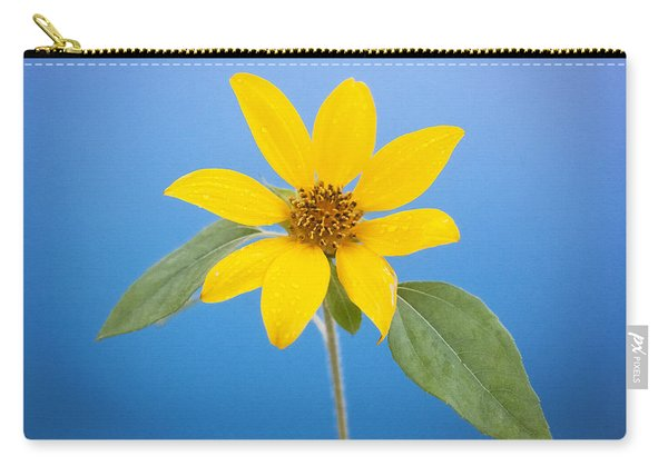Happy Sunflowers Helianthus  Carry-all Pouch