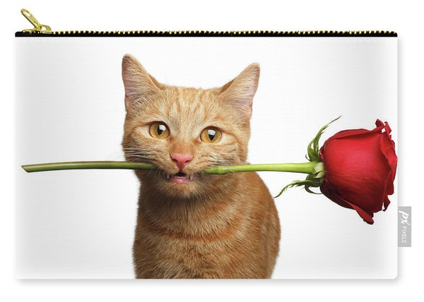 Portrait Of Ginger Cat Brought Rose As A Gift Carry-all Pouch
