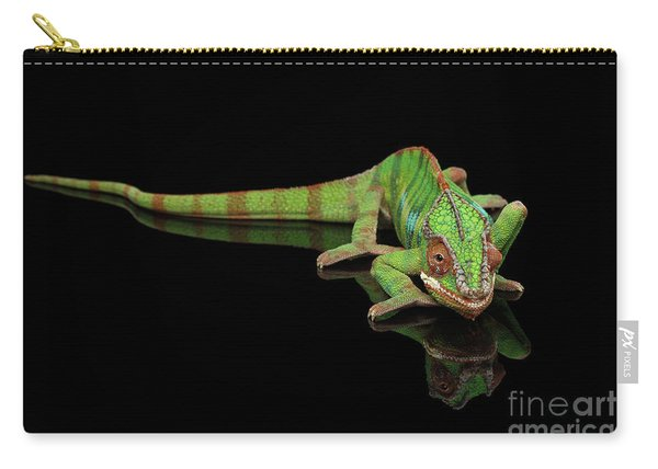 Sneaking Panther Chameleon, Reptile With Colorful Body On Black Mirror, Isolated Background Carry-all Pouch