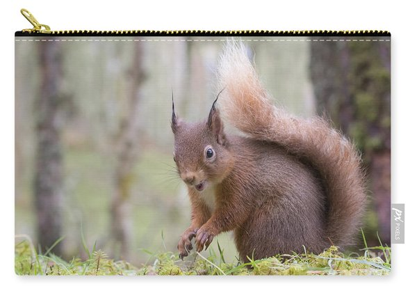 Red Squirrel - Scottish Highlands #8 Carry-all Pouch