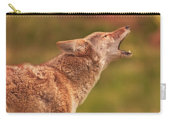 Coyote Carry-all Pouch