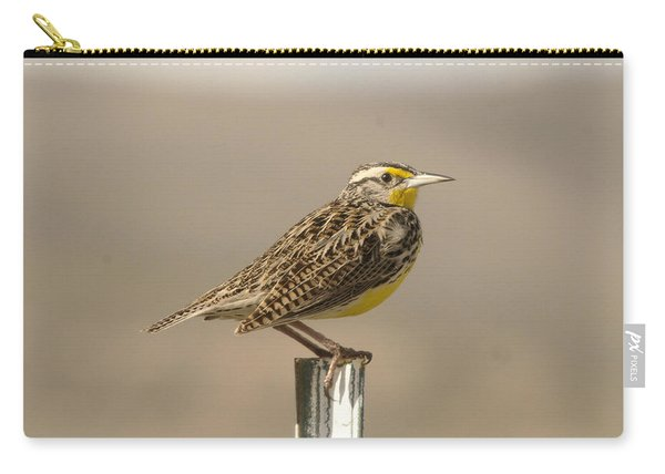 A Beautiful Meadowlark Carry-all Pouch