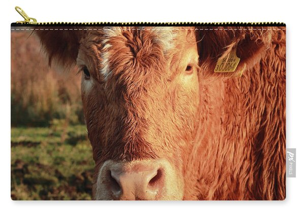 A Curious Red Cow Carry-all Pouch