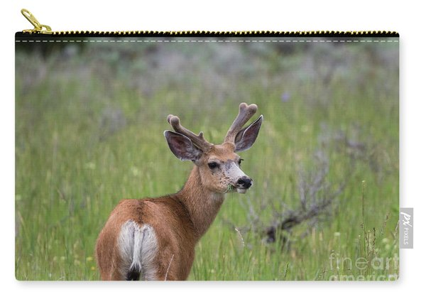 A Deer In Yellowstone National Park  Carry-all Pouch