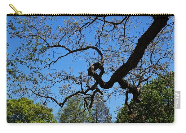 A Deformed Canopy Black Gum Carry-all Pouch