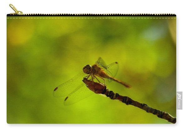 A Dragonfly Smile Carry-all Pouch