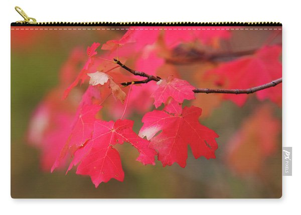 A Flash Of Autumn Carry-all Pouch