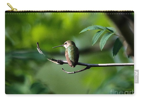 A Hummingbird Rests Carry-all Pouch