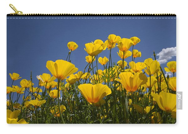 A Little Sunshine  Carry-all Pouch