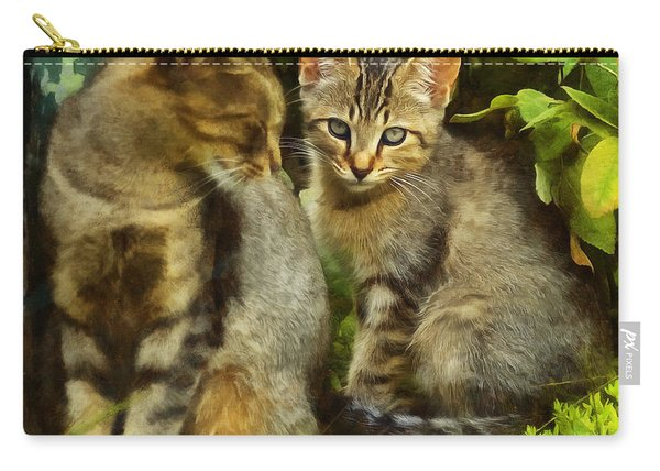 A Pair Of Feral Cats Carry-all Pouch