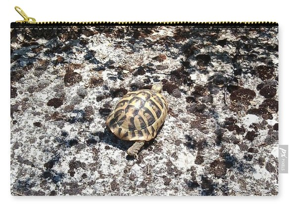 A Pal We Found In Greece Carry-all Pouch