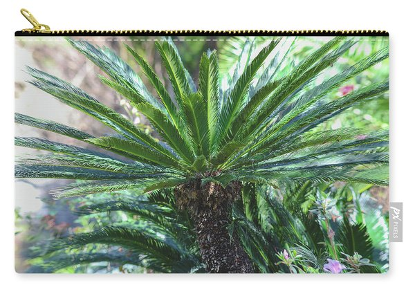 Carry-all Pouch featuring the photograph A Shady Palm Tree by Raphael Lopez