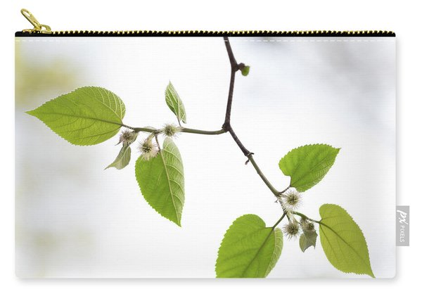 Carry-all Pouch featuring the photograph A Sky Behind Leaves by Raphael Lopez