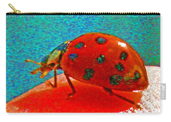 A Spring Lady Bug Carry-all Pouch
