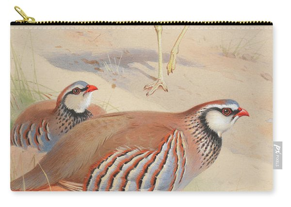 A Stone Curlew And A Pair Of French Partridge Carry-all Pouch