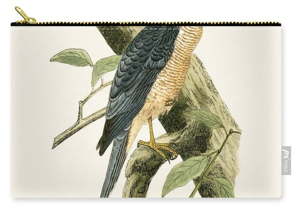 Accipiter Sphenurus Carry-all Pouch