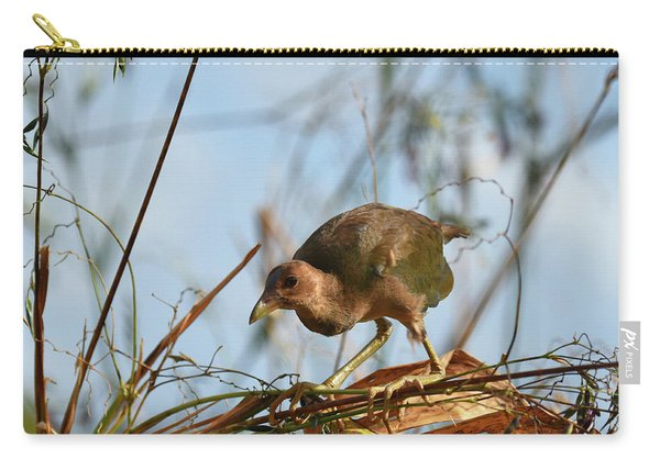 Adolescent Purple Gallinule Carry-all Pouch
