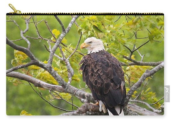 Adult Bald Eagle Carry-all Pouch