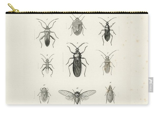 African Bugs And Insects Carry-all Pouch